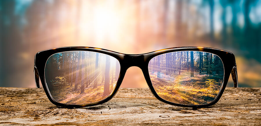 Looking Through Eyeglasses in the Forest